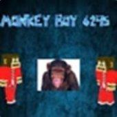 monkeyboy6295